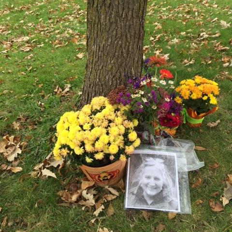 Sarah Bowman Memorial Tree
